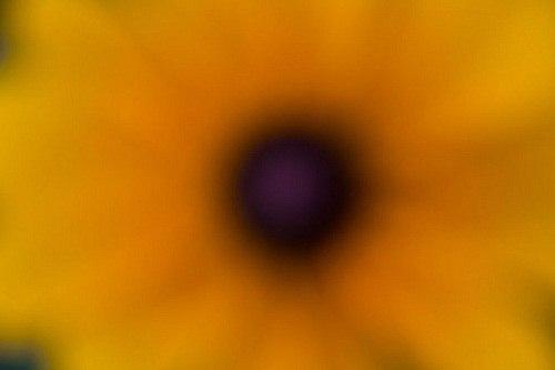 Cách chụp Multiple Exposure với Canon 5D Mark III 5