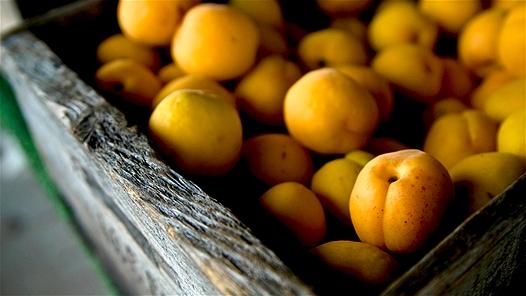 Những thực phẩm không nên ăn trái mùa 8