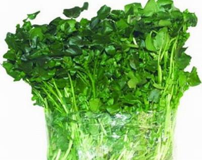 Công dụng tuyệt vời của các loại rau cải 3
