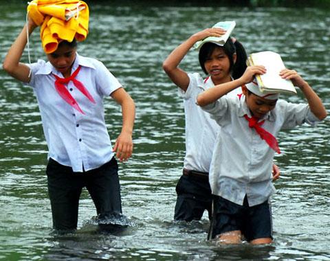 Lội sông đi học vì cầu tre thu phí 3