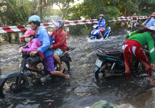 đạt đỉnh, người Sài Gòn bì bõm lội nước đi làm 7