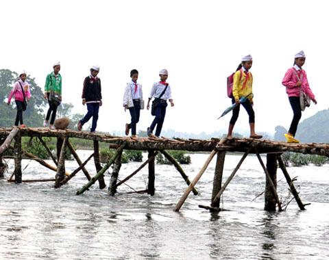 Lội sông đi học vì cầu tre thu phí 1