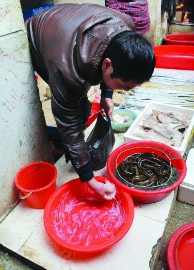 Cá giả làm bằng chất keo ở Trung Quốc