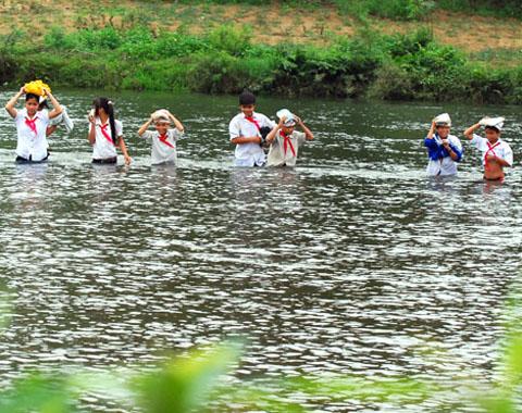 Lội sông đi học vì cầu tre thu phí 2