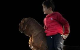 Chú chó nhà Messi giờ đã to lớn thế này cơ mà!