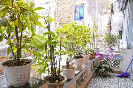 Ngắm nhà tiện nghi, hiện đại nơi phố cổ Hà Nội chật hẹp 10